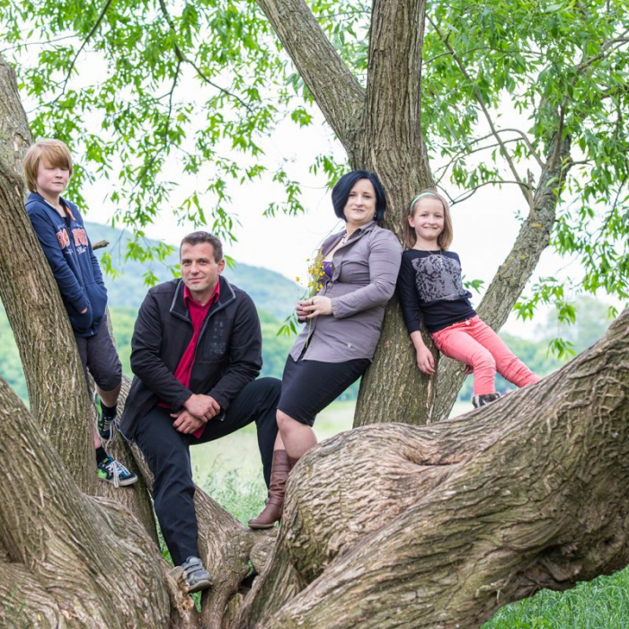 Eltern mit Sohn und Tochter auf einem Baum
